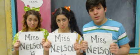 PASS - Miss Nelson is Missing